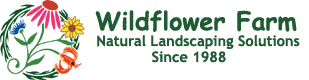 Wildflower Farm's Blog