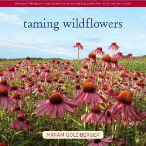 Making Babies - Chapter 5 gives the straight goods on wintering wildflower seeds outside or wintering wildflower in the fridge.