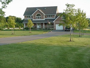 "For a traditional lawn look mow Eco-Lawn at 3"" height just once a month."
