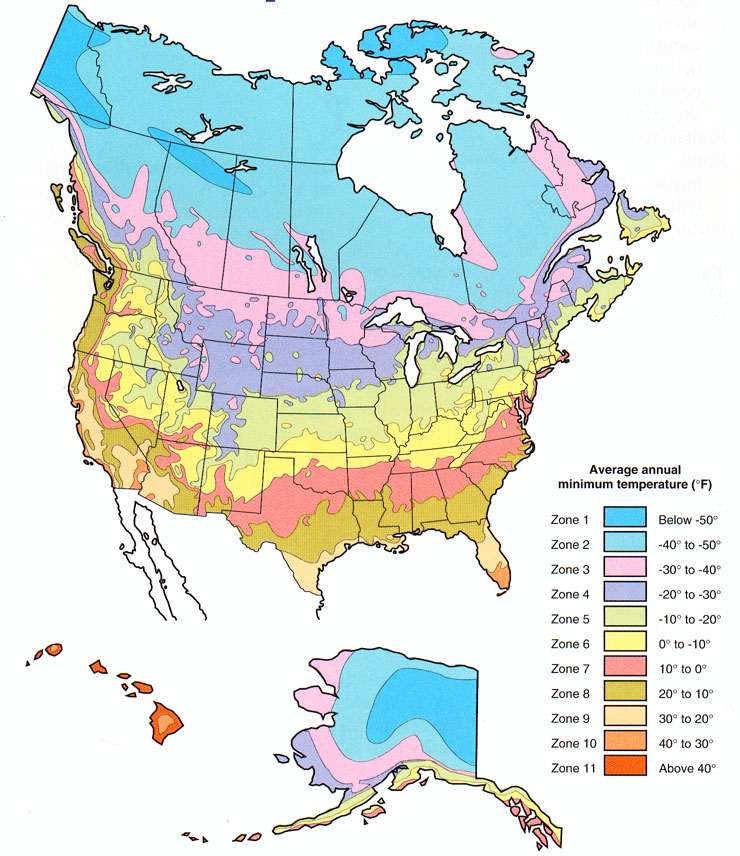 Plant Zone Map - Map of us growing zones